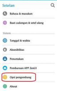 Cara Setting Opsi Pengembang Android