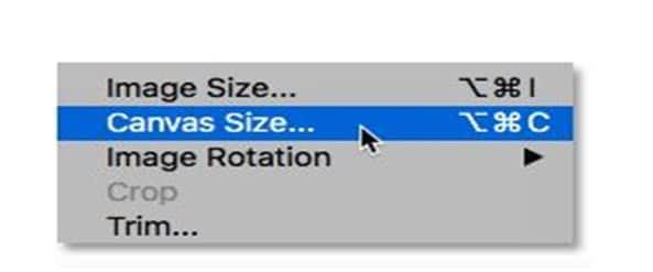 Ubah canvas size
